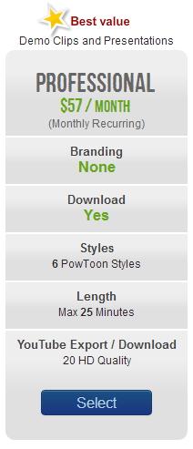 powtoon professional price