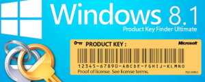 example for windows 8.1 key